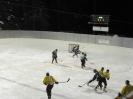 Vs. Eisb�ren in Toblach